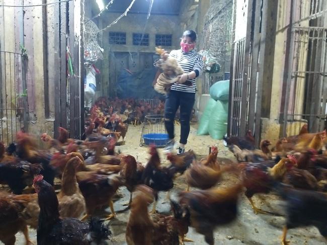 Giá gia cầm hôm nay 19/2: Cập nhật giá gà, vịt mới nhất tại chợ đầu mối và các vùng - Ảnh 1.