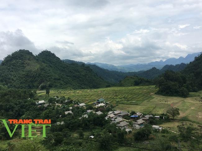 Mai Châu xây dựng nông thôn mới, đô thị văn minh - Ảnh 7.