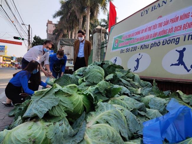"""Lan tỏa phong trào """"giải cứu"""" nông sản cho nông dân nhiều huyện tại Hải Phòng - Ảnh 4."""