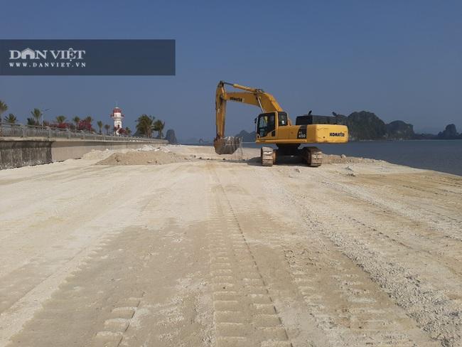 Quảng Ninh: Chủ đầu tư khu đô thị Phương Đông lấn chiếm đất, lấp bãi triều - Ảnh 2.