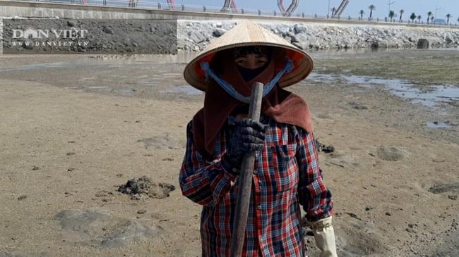 Quảng Ninh: Chủ đầu tư khu đô thị Phương Đông lấn chiếm đất, lấp bãi triều - Ảnh 1.
