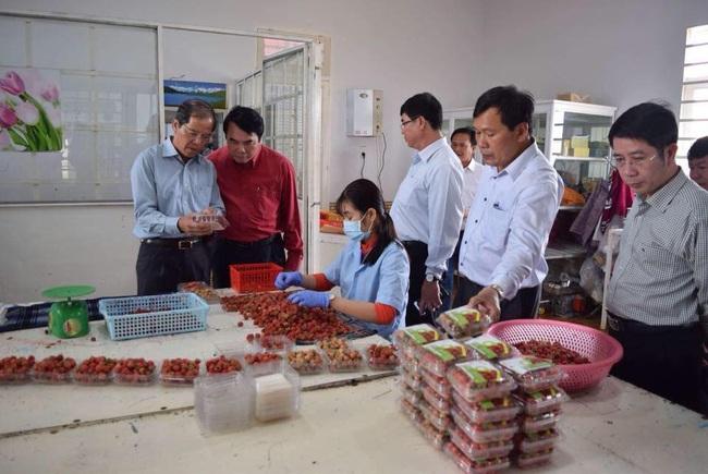 3 cá nhân ở Lâm Đồng được Chủ tịch nước tặng thưởng Huân chương Lao động là ai? - Ảnh 3.