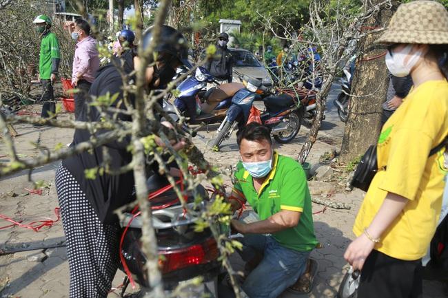 Đào phai mai tàn, người Hà Nội lại chơi thứ cây gốc rêu mốc hoa trăng muốt - Ảnh 8.