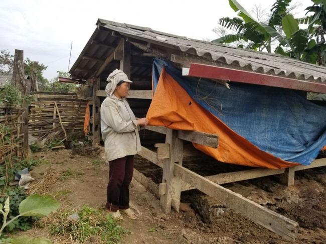 Điện Biên: hỗ trợ gia súc bị chết rét, làm nghiêm, không để trục lợi chính sách - Ảnh 4.