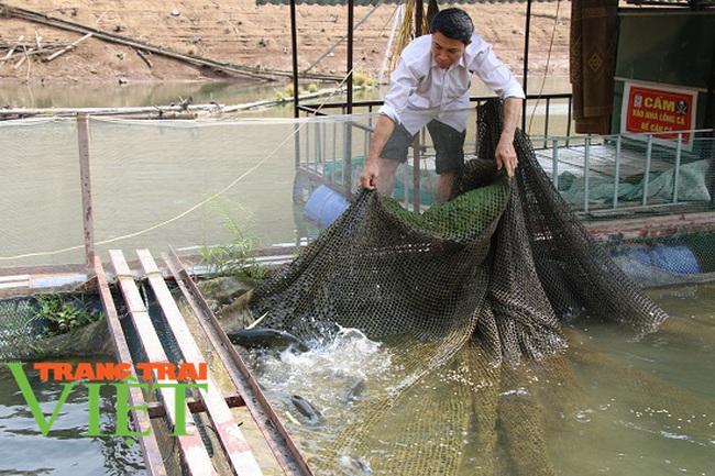 Quỳnh Nhai mở rộng quy mô nuôi cá lồng theo chuỗi giá trị bền vững - Ảnh 1.