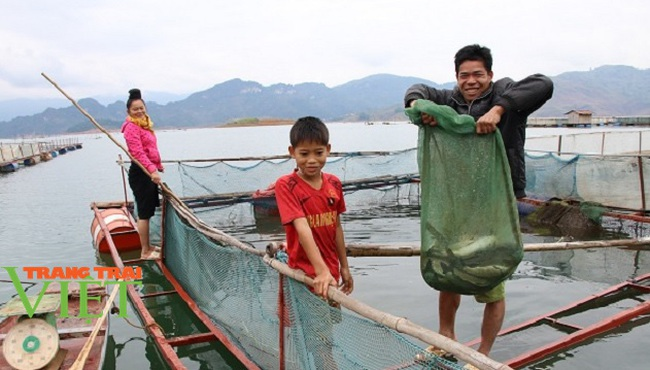 Quỳnh Nhai mở rộng quy mô nuôi cá lồng theo chuỗi giá trị bền vững - Ảnh 3.