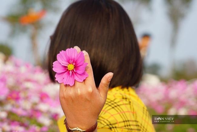 """Clip: Đồng hoa cánh bướm xuất hiện đầu tiên ở Hà Tĩnh gây """"sốt"""" sau tết - Ảnh 3."""