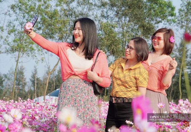 """Clip: Đồng hoa cánh bướm xuất hiện đầu tiên ở Hà Tĩnh gây """"sốt"""" sau tết - Ảnh 4."""