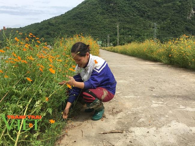 Mai Châu: Phát huy vai trò của đảng viên trong xây dựng nông thôn mới - Ảnh 1.