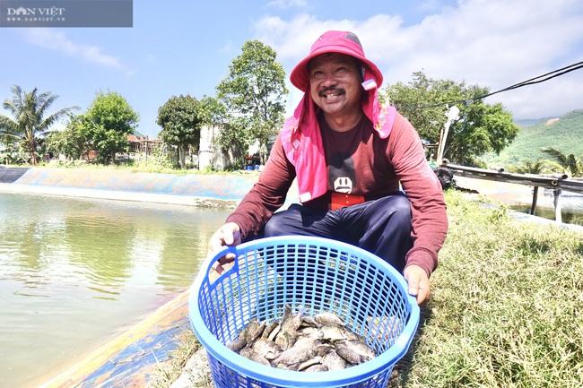 Đà Nẵng: Nuôi loài cá là đặc sản của vùng, lão nông thu tiền tỷ mỗi năm - Ảnh 5.