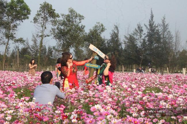 """Clip: Đồng hoa cánh bướm xuất hiện đầu tiên ở Hà Tĩnh gây """"sốt"""" sau tết - Ảnh 7."""
