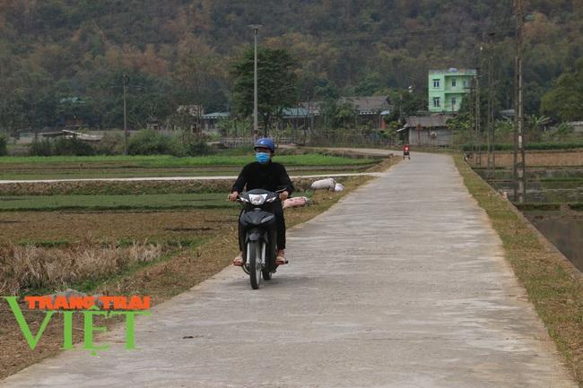 Mai Châu: Phát huy vai trò của đảng viên trong xây dựng nông thôn mới - Ảnh 3.