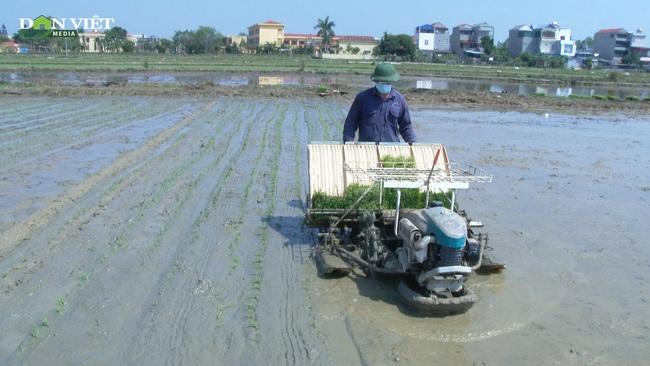 Đưa cơ giới hóa vào sản xuất nông nghiệp, nông dân Tân Kỳ phủ xanh 19.504 m2 diện tích đất ruộng bỏ hoang - Ảnh 2.