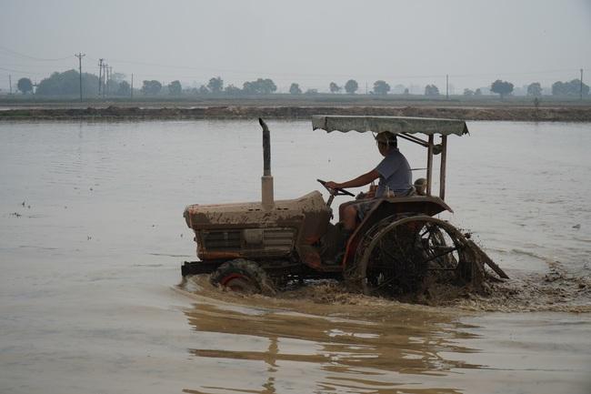 Vụ Đông Xuân 2020-2021: Còn gần 4.000ha chưa lấy nước đổ ải - Ảnh 1.