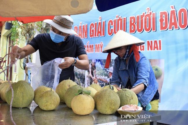 """Người Sài Gòn ùn ùn """"giải cứu"""" nông sản, 10 tấn bắp cải, 5 tấn bưởi hết trong tích tắc - Ảnh 4."""