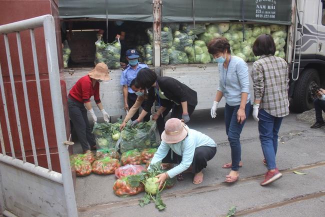 """Chỉ trong vài ngày, Hội ND Hà Nội làm cách nào giúp nông dân Hải Dương, Mê Linh """"giải cứu"""" gần 40 tấn rau? - Ảnh 1."""
