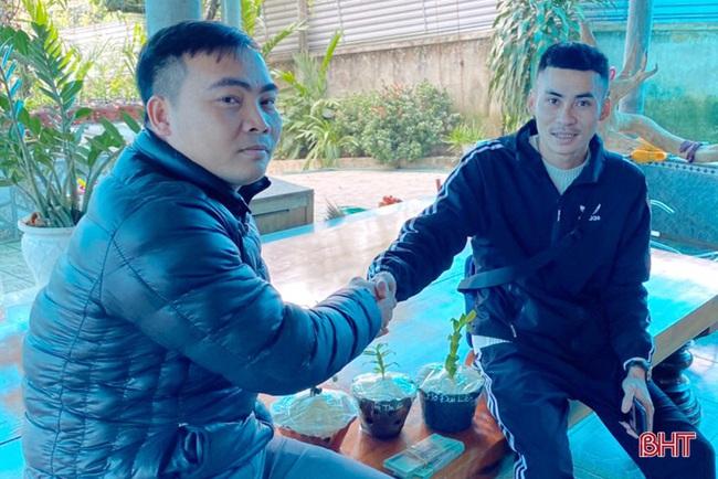 """50 giò lan rừng đột biến đẹp mê li trong vườn lan rừng """"khủng"""" của một nông dân tỉnh Hà Tĩnh - Ảnh 12."""