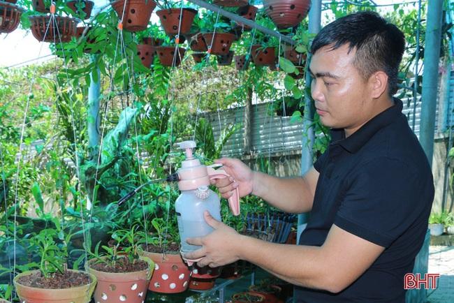 """50 giò lan rừng đột biến đẹp mê li trong vườn lan rừng """"khủng"""" của một nông dân tỉnh Hà Tĩnh - Ảnh 5."""