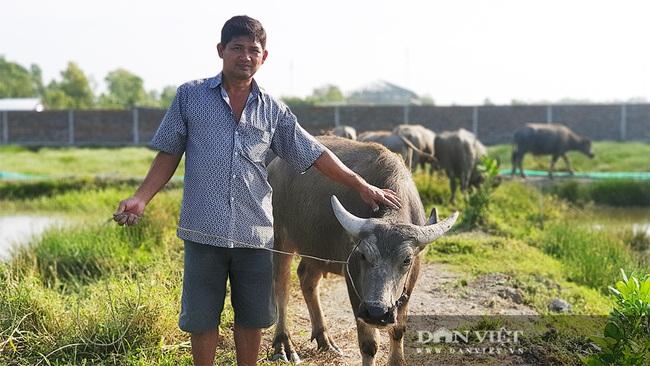 Hậu Giang: Một nông dân bán vàng cưới khởi nghiệp, 27 năm sau trở thành tỷ phú nuôi trâu, xây nhà hơn 3 tỷ đồng - Ảnh 1.