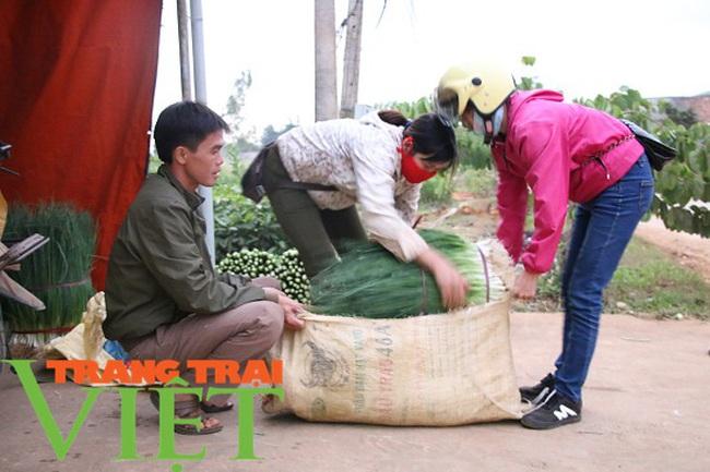 Mường Bon mở rộng diện tích trồng rau màu, tăng cao thu nhập cho nông dân - Ảnh 2.
