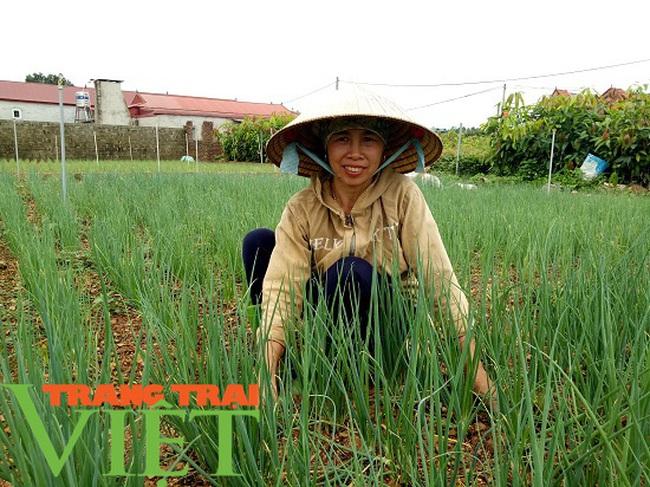 Mường Bon mở rộng diện tích trồng rau màu, tăng cao thu nhập cho nông dân - Ảnh 5.