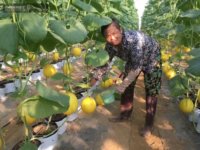 Thiệu Hóa (Thanh Hóa): Nhiều mô hình chuyển đổi đất lúa kém hiệu qua cho thu nhập cả trăm triệu/ha - Ảnh 1.