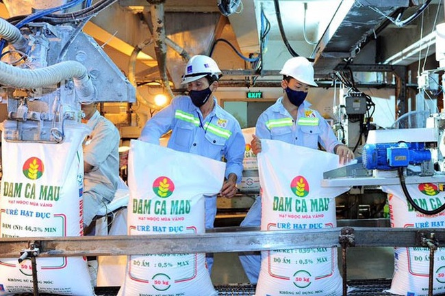 Bình ổn giá phân bón tại Việt Nam: Thúc đẩy sản xuất,  điều tiết xuất khẩu - Ảnh 1.