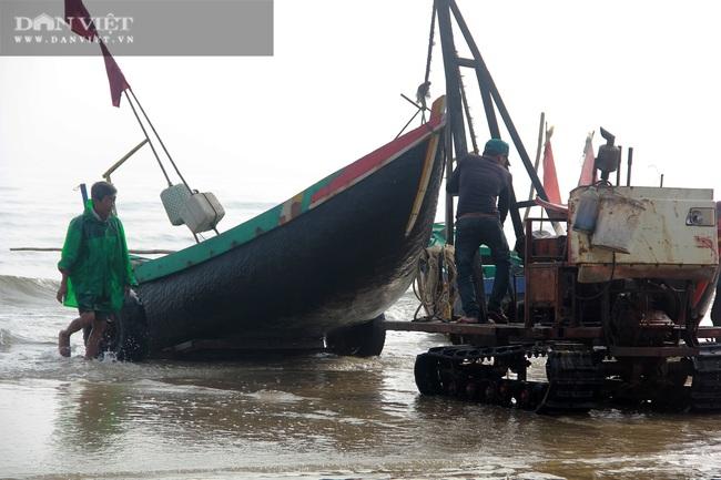 Ngư dân Cẩm Xuyên (Hà Tĩnh) săn cá trích, bỏ túi chục triệu đồng mỗi ngày - Ảnh 5.