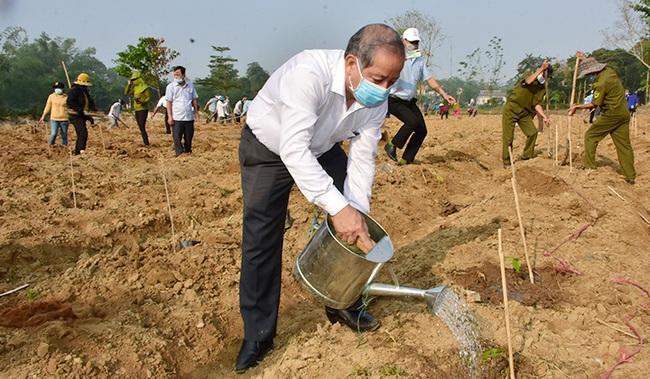 TT-Huế: Trồng mới 7 triệu cây xanh, đưa việc trồng cây thành phong trào thi đua của các cấp, các ngành    - Ảnh 1.