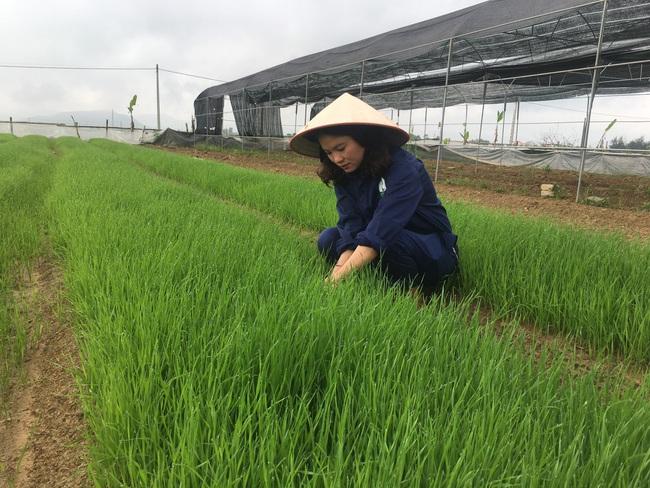Làm liều với sản phẩm mì rau, củ hữu cơ, bà chủ trẻ có cơ ngơi hàng chục tỷ đồng   - Ảnh 4.