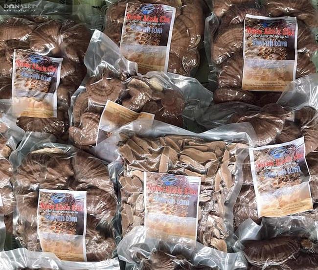 Đà Nẵng: Tự học nghề trồng nấm qua mạng, chàng trai 8X thu lãi 400 triệu đồng mỗi năm - Ảnh 6.