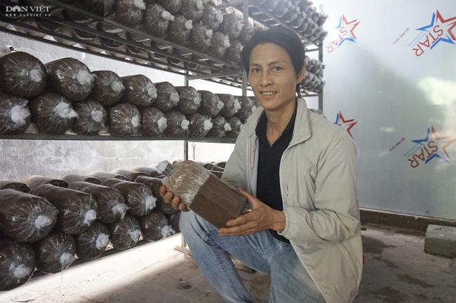 Đà Nẵng: Tự học nghề trồng nấm qua mạng, chàng trai 8X thu lãi 400 triệu đồng mỗi năm - Ảnh 1.