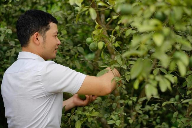Chàng trai tốt nghiệp đại học bỏ phố về quê xây dưng ước mơ đưa quả chanh xứ Nghệ vươn tầm Quốc tế - Ảnh 2.