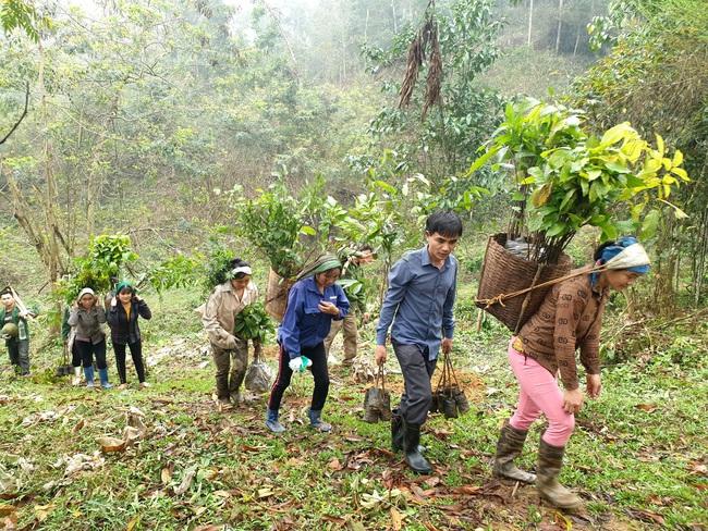 Ngày Thế giới trồng cây: Trồng hơn 21.000 cây gỗ lớn rừng đầu nguồn - Ảnh 1.