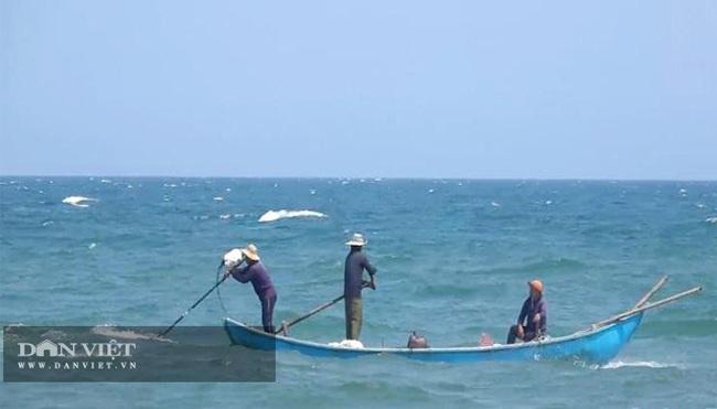Quảng Ngãi: Sắm vợt sắt khủng dài hơn 8m đi cào ốc bé tẹo, ngư dân kiếm vài triệu/ngày   - Ảnh 5.