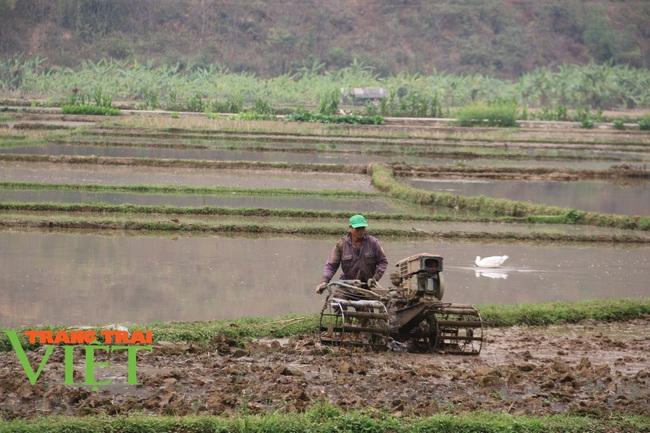 Mai Châu: Phát huy sức mạnh đoàn kết trong xây dựng nông thôn mới - Ảnh 8.