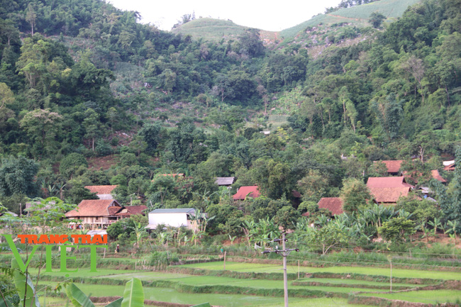 Người dân Nà Bó chung tay cùng chính quyền gìn giữ các tiêu chí nông thôn mới - Ảnh 4.