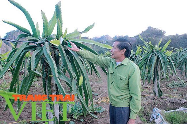Người dân Nà Bó chung tay cùng chính quyền gìn giữ các tiêu chí nông thôn mới - Ảnh 6.