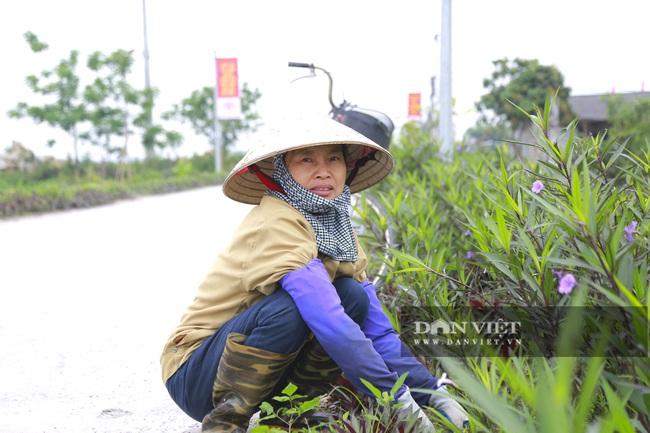 Hà Nam: Xã Liêm Phong có gì đặc biệt để được công nhận nông thôn mới kiểu mẫu? - Ảnh 6.