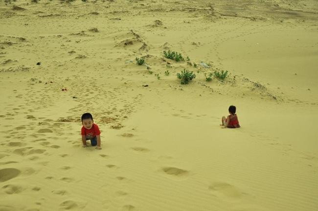 Sống chậm cùng Quy Nhơn, tận hưởng những vẻ đẹp hoang sơ kỳ thú - Ảnh 8.