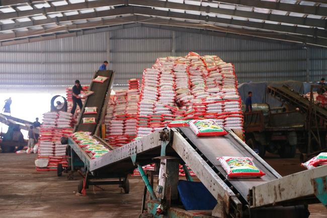 Supe Lâm Thao:Nỗ lực giảm chi phí sản xuất phân bón - Ảnh 1.