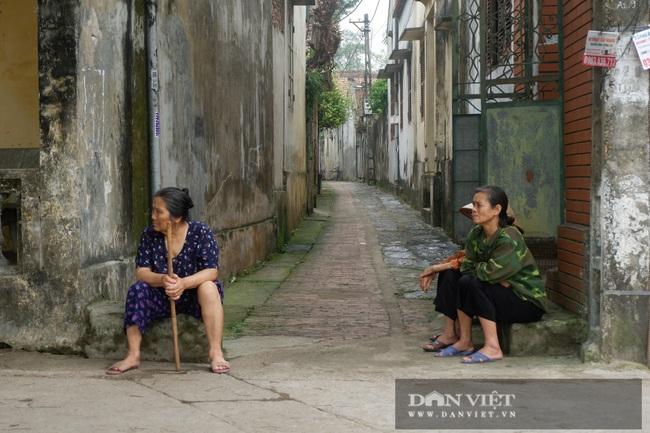 Hà Nội: Ngồi làng cổ 800 năm  - Ảnh 8.