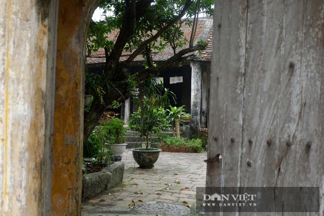 Hà Nội: Ngồi làng cổ 800 năm  - Ảnh 7.