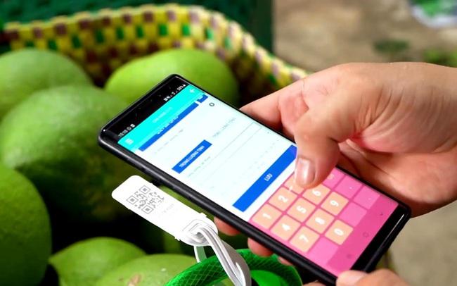 HTX thực hiện truy xuất nguồn gốc từ trái bưởi đến tận từng vườn của bà con thành viên.