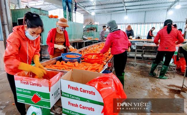 Trong thời gian bị phong tỏa, TP. Chí Linh vẫn tiêu thụ 1,1 nghìn tấn gà đồi, trên 4,5 nghìn tấn nông sản - Ảnh 2.