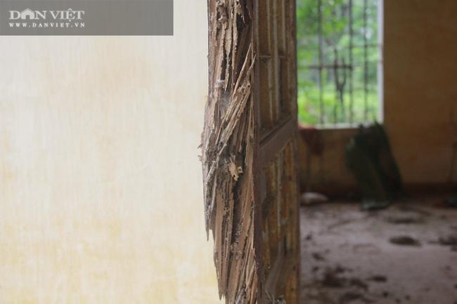 Trung tâm phục hồi chức năng lương y Võ Hoàng Yên bỏ hoang, để không, vỡ nát tại Hà Tĩnh - Ảnh 7.