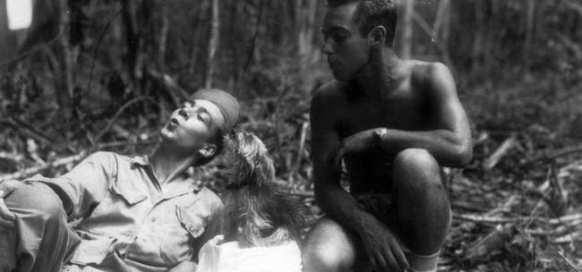 Smokey - người hùng 4 chân đáng yêu trong Chiến tranh thế giới thứ 2  - Ảnh 5.