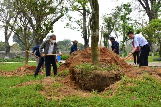 """Chủ tịch Thừa Thiên Huế đề nghị nghiên cứu tổ chức """"Festival Mai Huế""""  - Ảnh 1."""