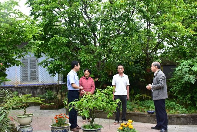 """Chủ tịch Thừa Thiên Huế đề nghị nghiên cứu tổ chức """"Festival Mai Huế""""  - Ảnh 3."""