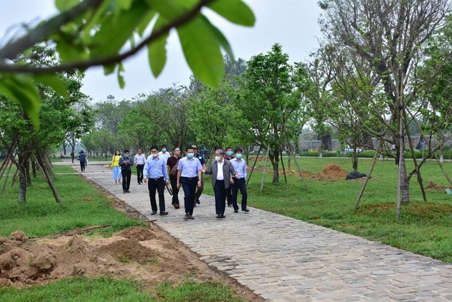 """Chủ tịch Thừa Thiên Huế đề nghị nghiên cứu tổ chức """"Festival Mai Huế""""  - Ảnh 4."""